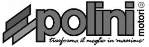 PISTON RINGS D.40,3X1,5 MINARELLI AM6 CAST IRON CYL.